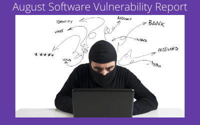 August Software Vulnerability Report